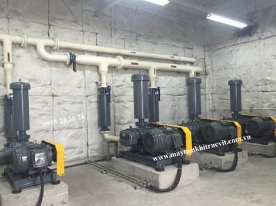 Các ưu điểm và ứng dụng máy thổi khí Shinmaywa