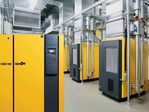Kaeser air compressor maintenance -  CSD and CSDX Series